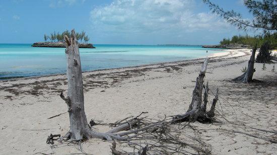 Eleuthera: Gaulding Cay