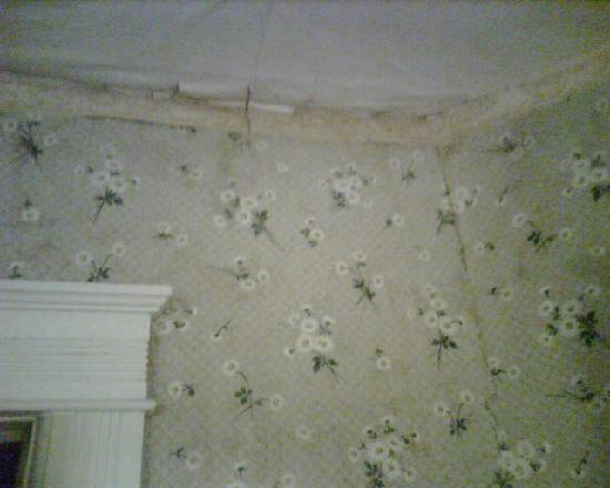 Watkins Glen Villager Motel: crumbling stained walls