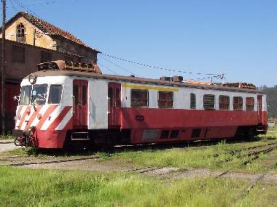 Linha da Vouga train