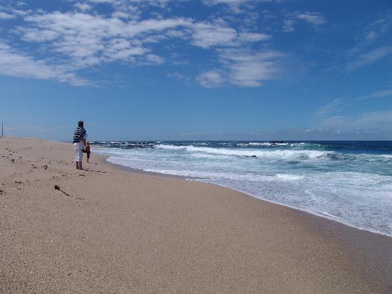 Axis Vermar Conference & Beach Hotel: Atlantik