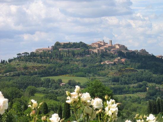 Terre di Nano: View of Montepulciano from Pulcino's restaurant garden