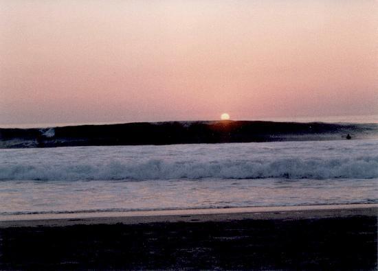 wave on zicatele at sunset opposite hotel rockaway
