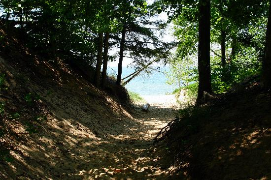 Saugatuck, MI: To get to the beach, you've got to go on a short hike through the woods