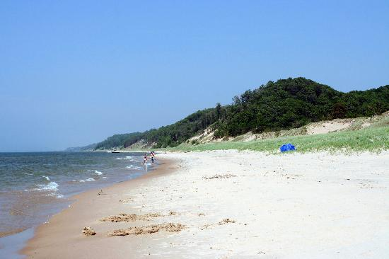 Saugatuck Dunes State Park: Beautiful beach!