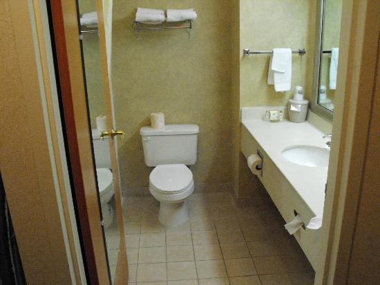 BEST WESTERN Commerce Inn: Bathroom