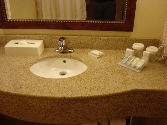 Hilton Garden Inn Toronto / Burlington: Bath