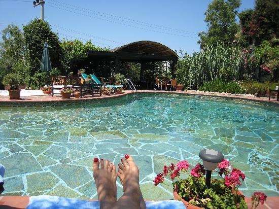 El Vino Hotel & Suites: Pool area