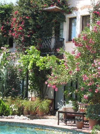 El Vino Hotel & Suites: A true oasis