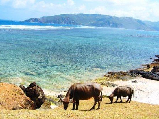 Lombok, إندونيسيا: Kuta Beach, Southern Lombok