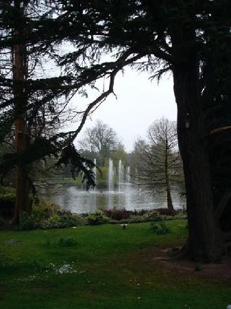 Angel Hotel: The lovely gardens brightened up a dreary day
