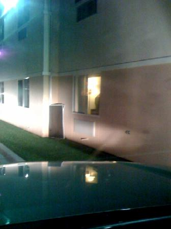 Econo Lodge Inn & Suites: window screens on ground
