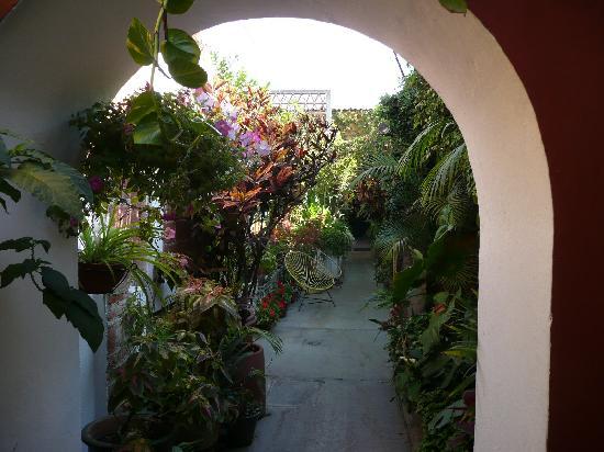 Las Golondrinas: Une des cours intérieures fleuries