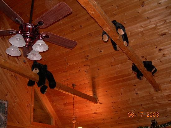 Hidden Mountain Resort: stuffed bears on the rafters