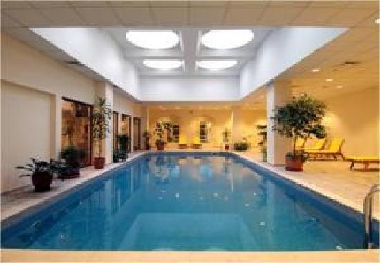 Conrad Istanbul Bosphorus: piscina cubierta xD