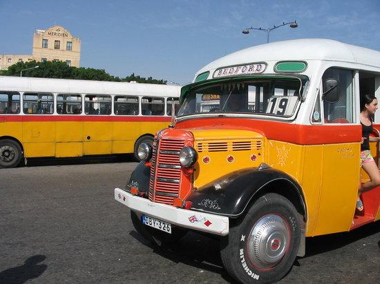 มอลตา: Malta Bus