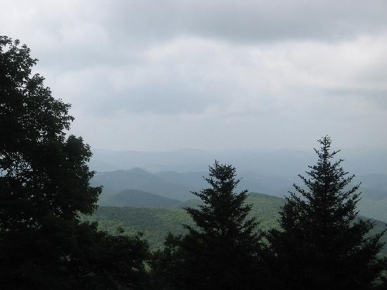 Ash Grove Mountain Cabins & Camping: ...and this further example of Mother Nature's wonder!