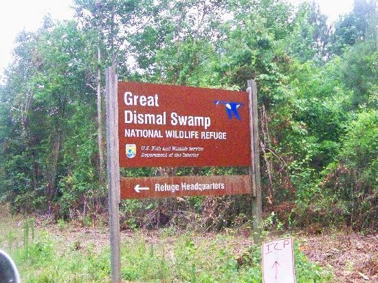 Holiday Inn Express Chesapeake : The Wildlife reserve
