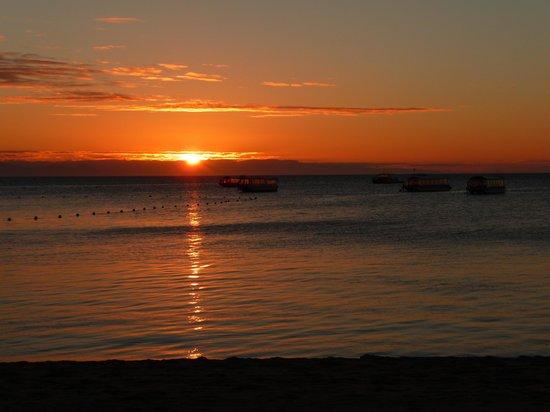Green Island Resort: Glass bottom boats at sunset