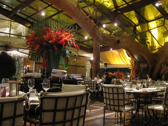 Figueira Rubaiyat: inside the restaurant