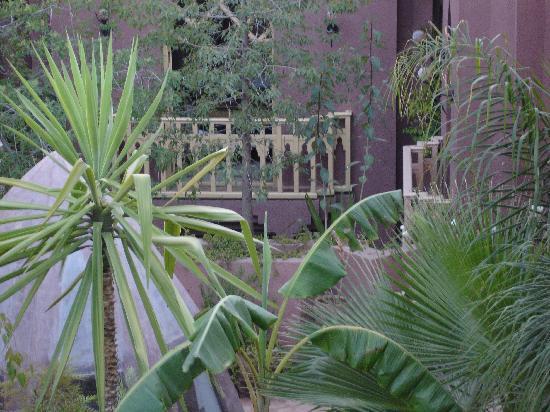 Riad Amira Victoria: garden