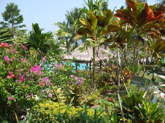 Puri Dajuma Cottages: The view of the gardens and pool from the room