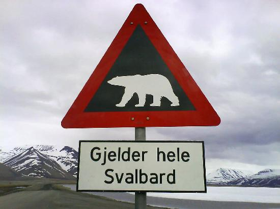 Spitsbergen, Noorwegen: Just so you know, this applies to ALL of Svalbard