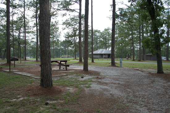 Donalsonville, GA: Picnic Area with Playground
