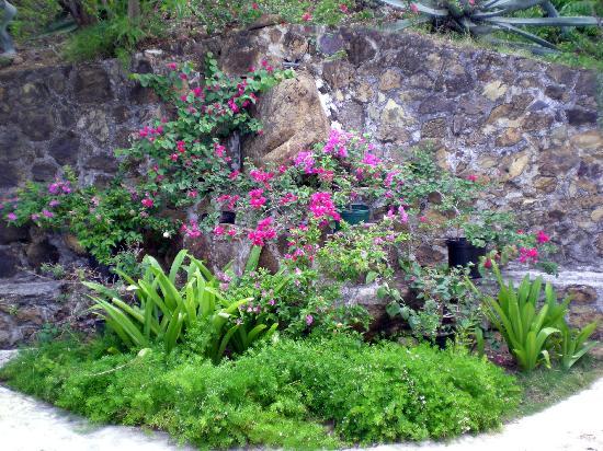 Guana Island: nice landscaping