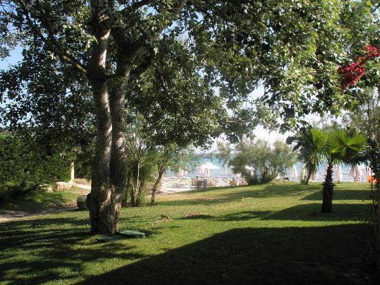 Sani Asterias : gardens surrounding the asterias