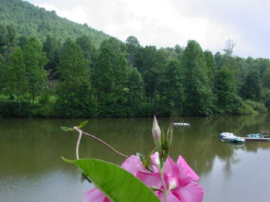 Asheville Cabin Rentals: Lake's