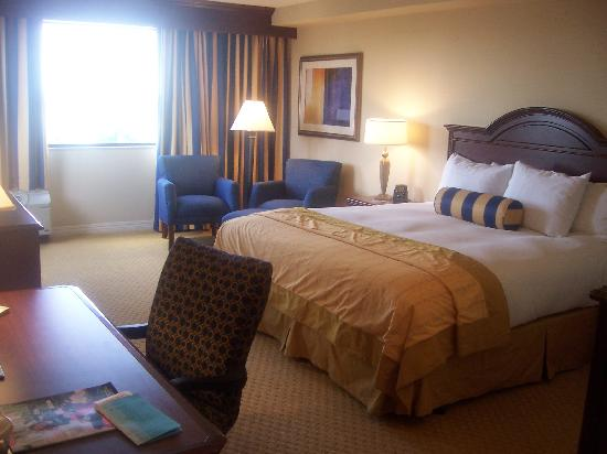 Hilton Waco: the room
