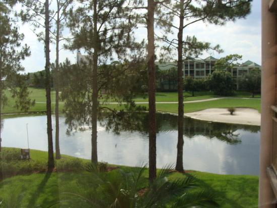 Marriott's Royal Palms: Balcony view