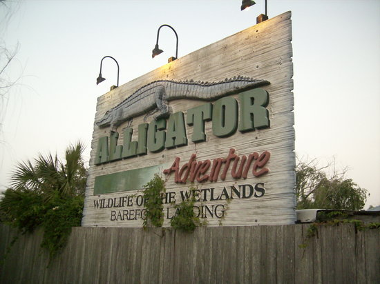Alligator Adventure: Entrance