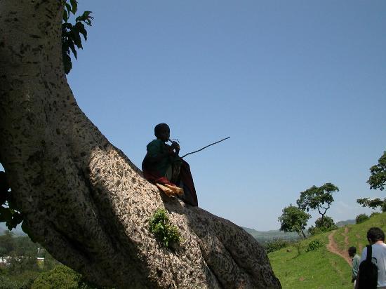 Lake Tana: On the trail to falls