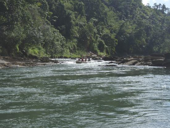 Rivers Fiji - Day Adventures: Along the river #2
