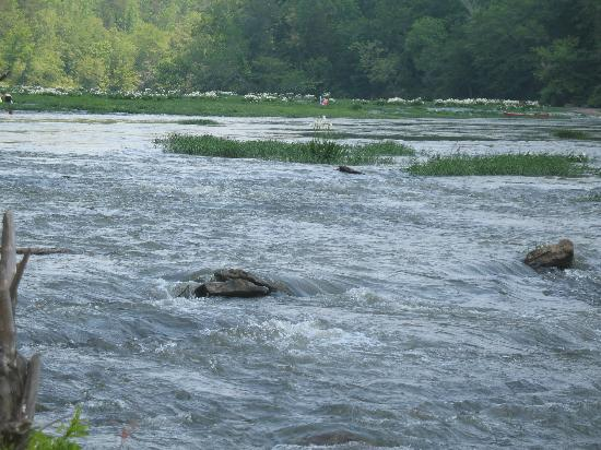 Алабама: Cahaba River, West Blocton