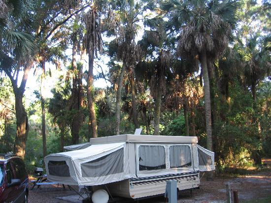 Hunting Island State Park: Camping in a Palm Tree Forest!