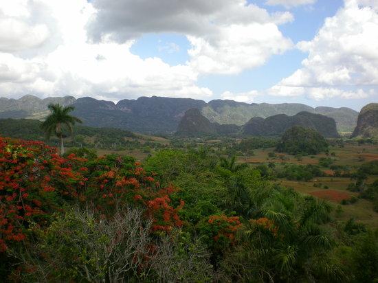 Pinar del Rio Province, Cuba: Mogotes en la provincia de Pinar del Río