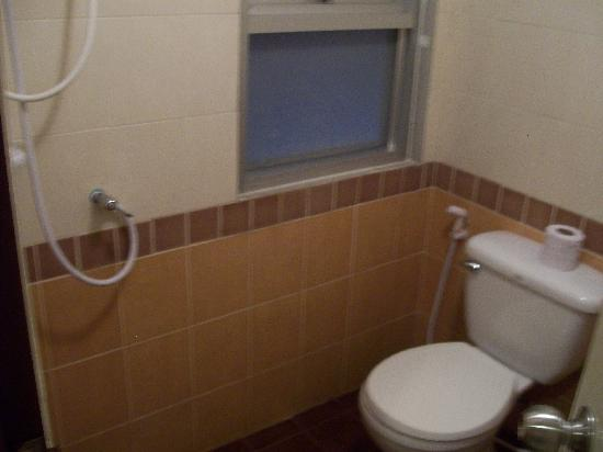 "Grand Pinnacle: Yes, that is the ""shower"" next to the toilet!"