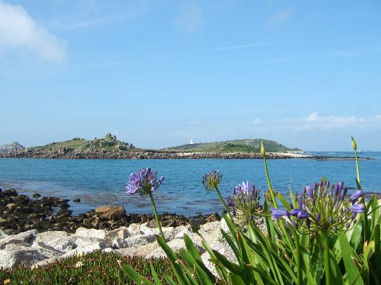Tresco, UK: View to sea from gardens