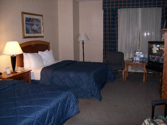Comfort Inn & Suites Truth or Consequences: First View of Room