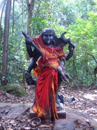 Tamil Nadu, Hindistan: vana durga
