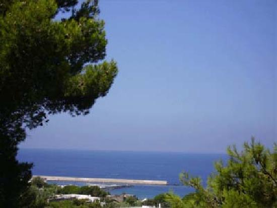 Villa Le Magnolie: Panorama dall'hotel