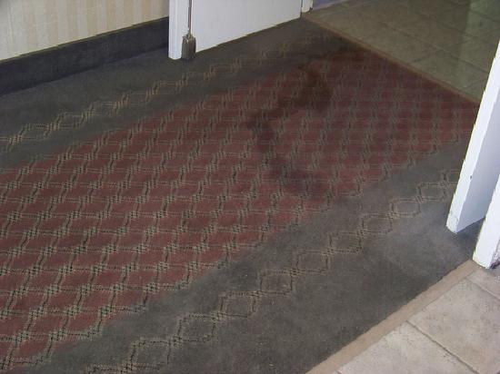 White River Inn and Suites: Stained Carpets