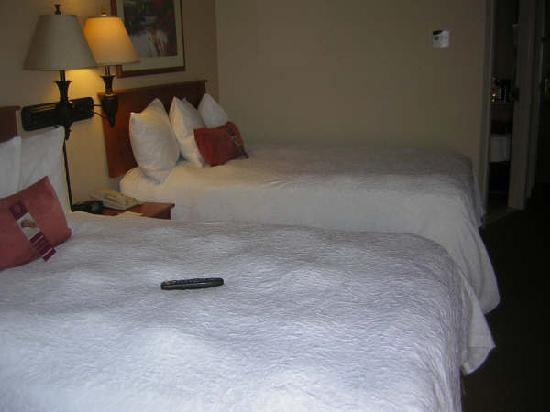 Hampton Inn Tucson-Airport: comfy  beds