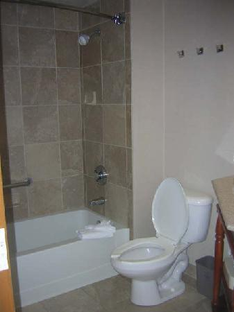 Hampton Inn Tucson-Airport: bathroom
