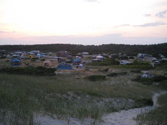 Overall Campsite Picture Of Ocracoke Campground