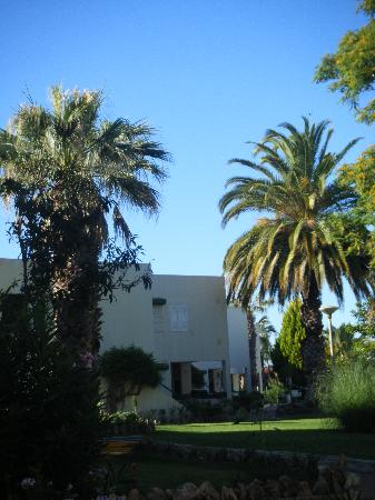Oasis Village Apartments: Grounds