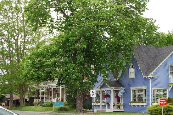 Amber Rose Inn: Downtown Mahone Bay.