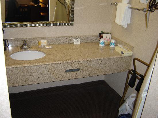 Quality Inn Exit 4: Sink Area